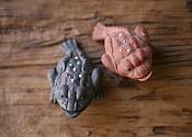 [자사] 미니 삼족 뚜꺼비